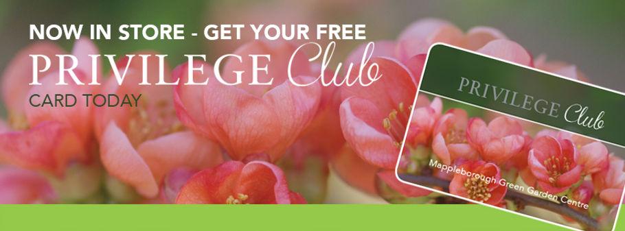 FB-header-privilige-club2.jpg