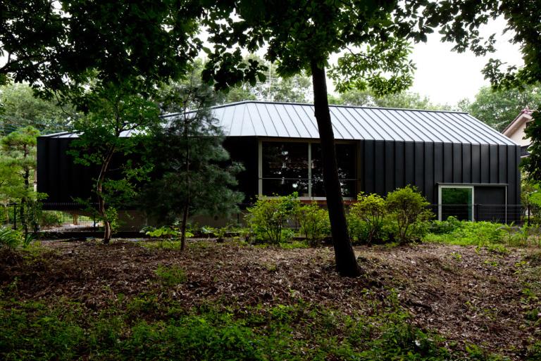 森に建つ家-layered0101