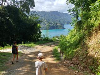 Tobago, un petit air de paradis...