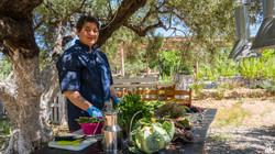 Cretan Cooking | Experience