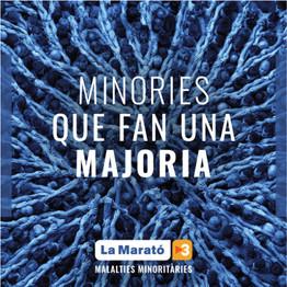 LA MARATÓ DE TV3 (2019)