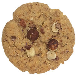 Vegan Hazelnut cookie baked in Berlin and topped with toasted hazelnuts