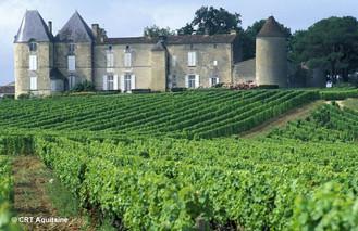 bordeaux-vineyards-france-hiking.jpg