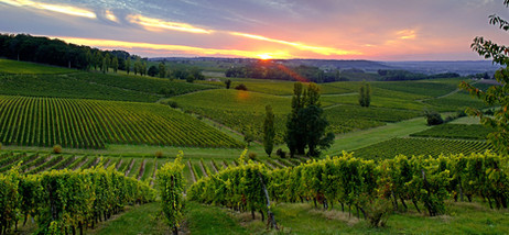 southwest-france-chateau-belingard-viney