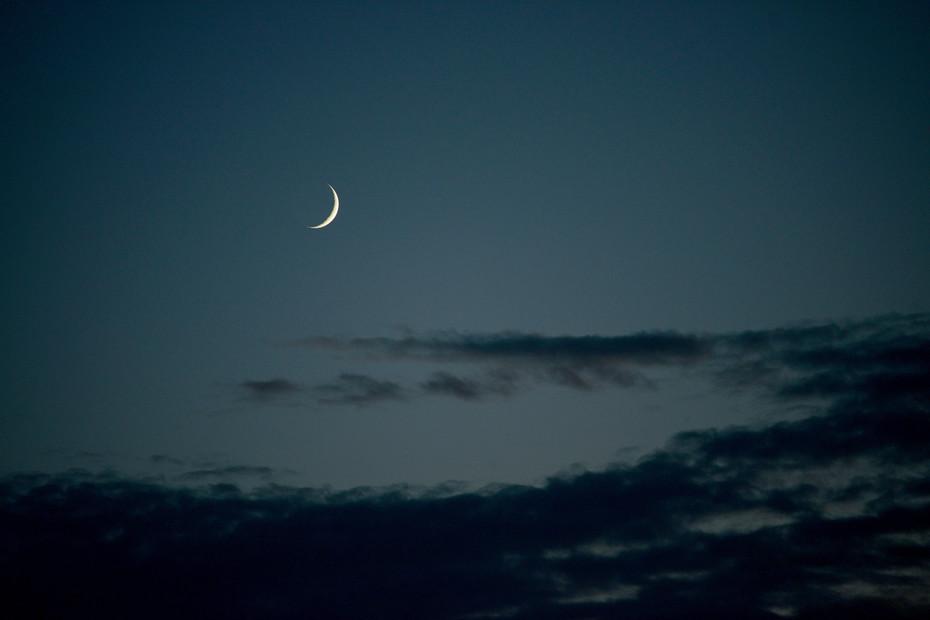 Crescent Moon Near Lomira, WI
