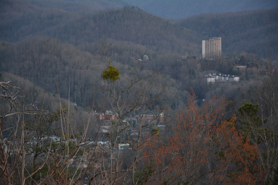 Tennessee March 2016 398.JPG