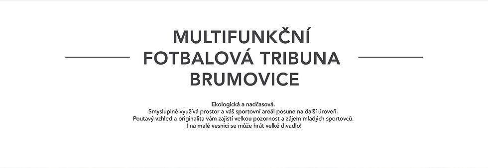 tribuna_WEB-04.jpg