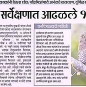 Toranmal News_Suryavanshi_edited.jpg