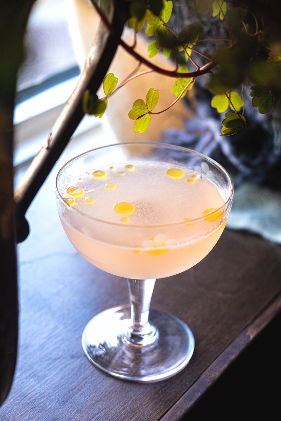 A photo of the Sicilian Sour, a cocktail recipe by Adrian Chappell, bartender in Saskatoon.