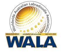 Jellybelly WALA logo (1).png