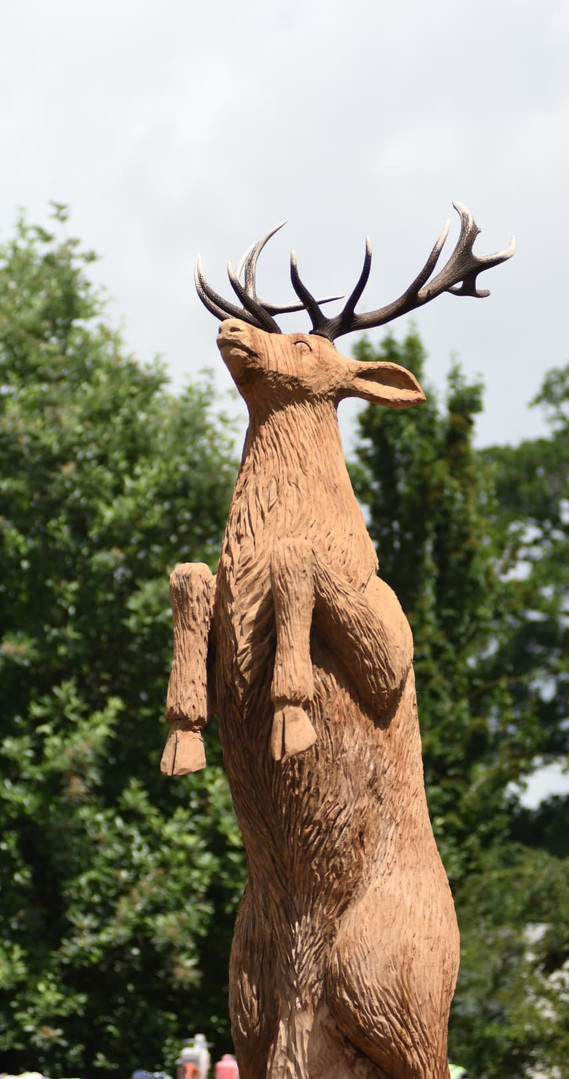 3523Killarney Life-Sized Red Deer Stag