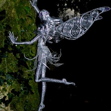 Climbing Fairy