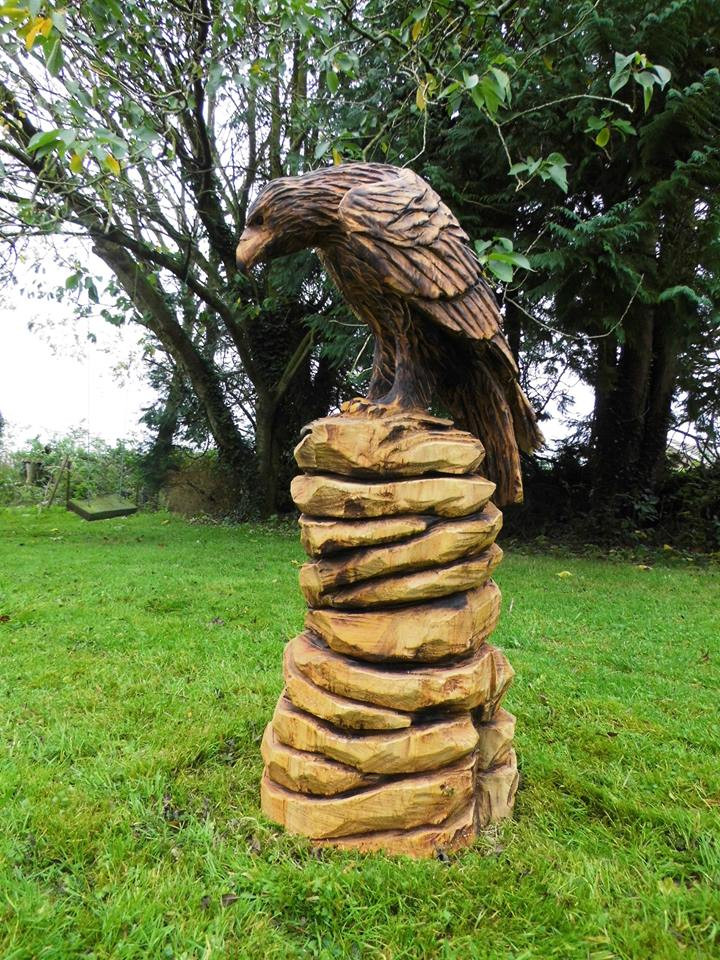 Eagle, Bantry, Co Cork