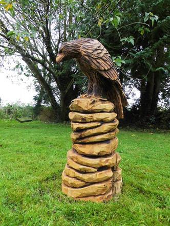 Eagle, Bantry, Co Cork