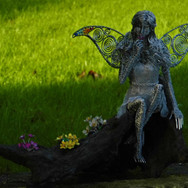 Fairy with Flowers of the Burren