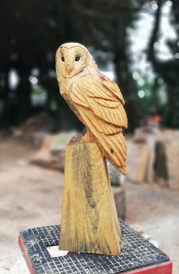 Chainsaw carving owl carved chainsaw carved statue art wood