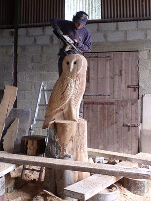 Wells house carving the owl