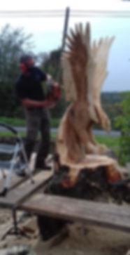 Fear na Coillte Chainsaw Sculptures, Will Fogarty Carving a Large Flying Eagle,Ireland