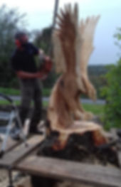 Fear na Coillte Chainsaw Sculptures.  Will Fogarty carving a giant flying eagle.
