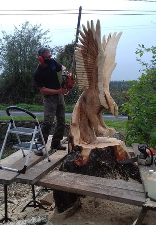 Carving Giant Eagle in Co Cork