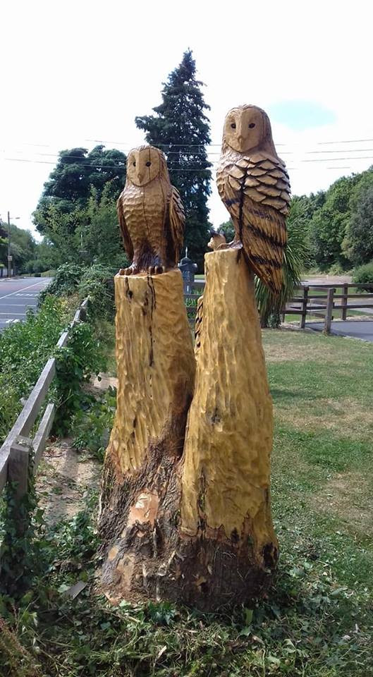 Pair of Owls at National School, Cratloe, Co Clare