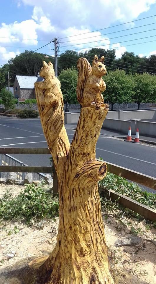 Squirrels at Cratloe National School, Co Clare