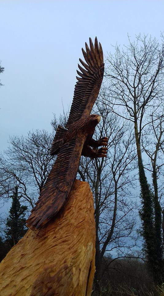 Flying Eagle, Carrigaline, Co Cork