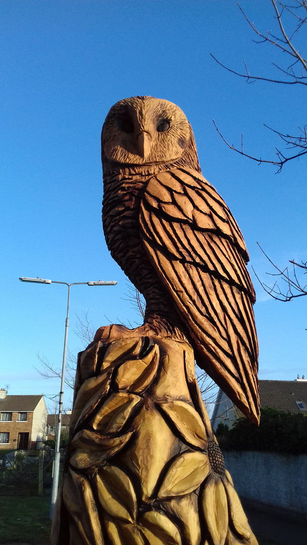 Owl Totem, Tralee, Co Kerry, Ireland