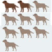 18%dogs.png