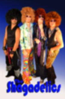 The Shagadelics 70's disco cover band chicago