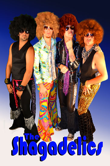 The Shagadelics 70's disco cover band chicago
