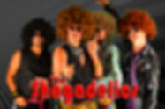 Shagadelics 70's disco cover band chicago