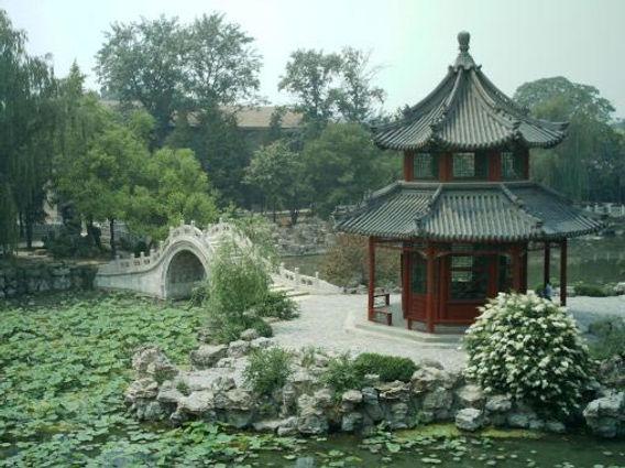 Bao Pic.jpg