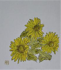 ひまわり-6.14-B.jpg