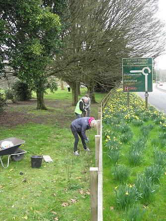 20210320 Hedge Planting Churchill Garden