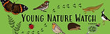 Young Nature Watch.JPG