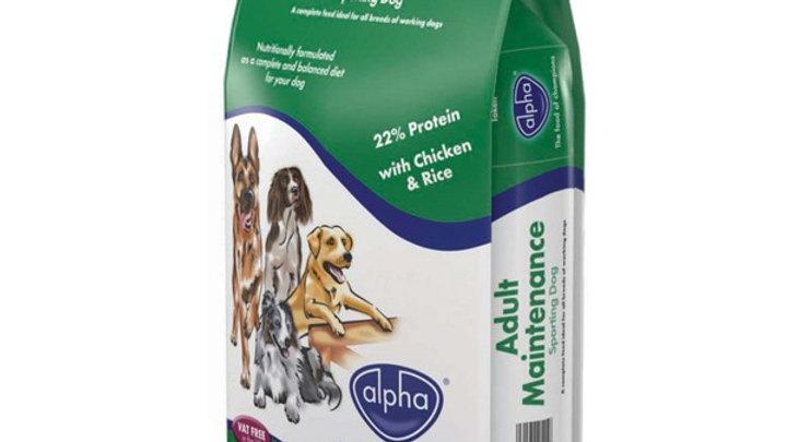 Alpha Maintenance Sporting Dog
