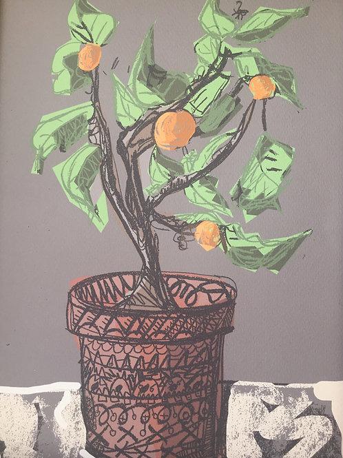 Orange Tree -  Lockdown Spring 2020 - Print