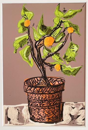 Orange Tree - 2020_edited.jpg