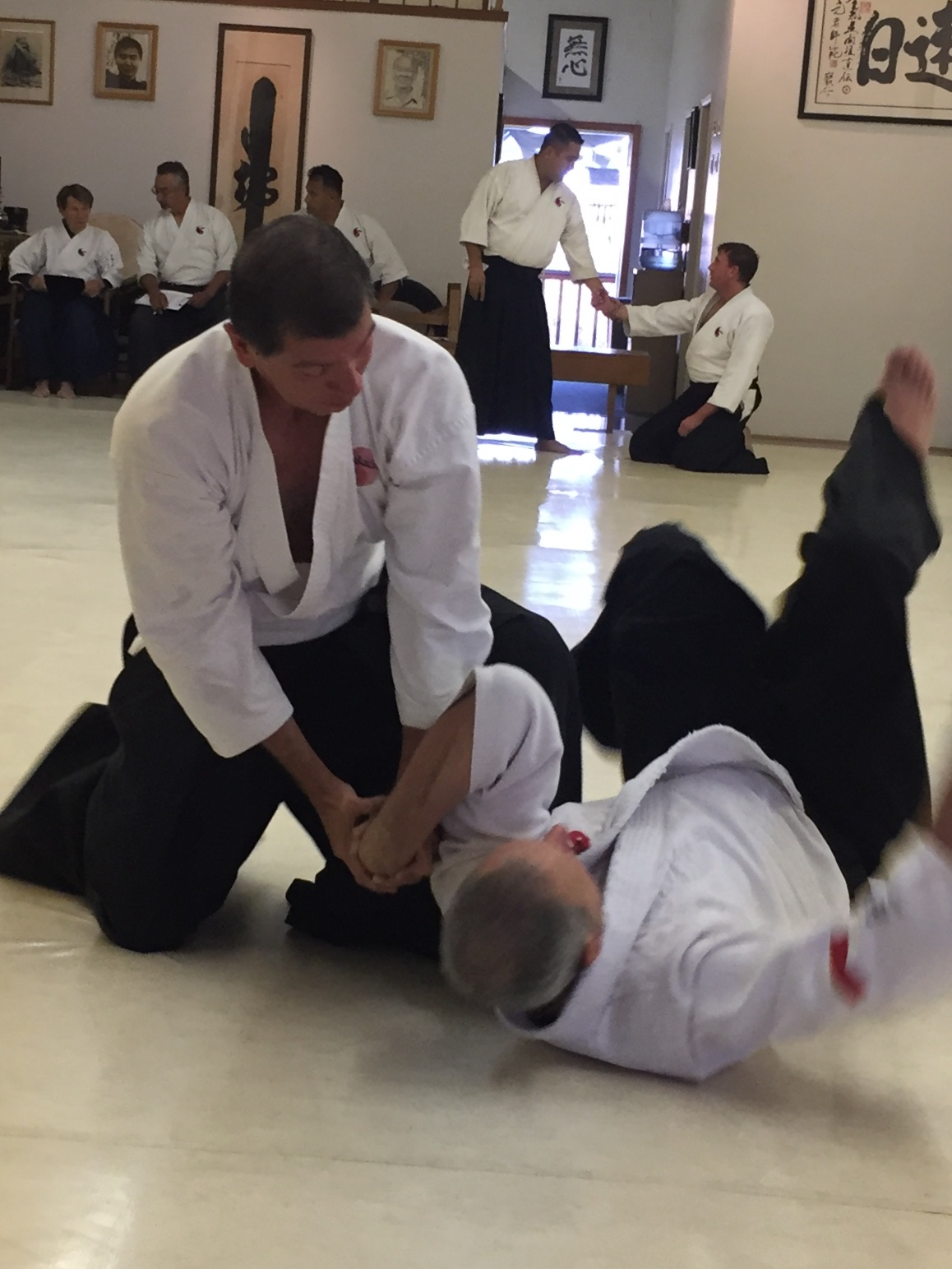 Louis's Nidan Exam 2017