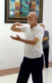 Joe DePonte masters Grasping Bird's Tail.