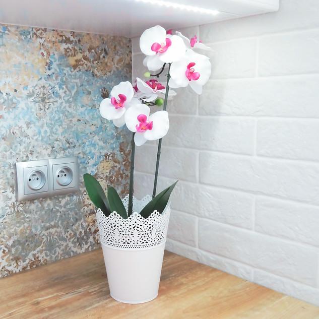 Kuchnia - kwiaty