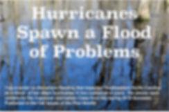 hurricanes%202020-04-30_15-07-00_edited.
