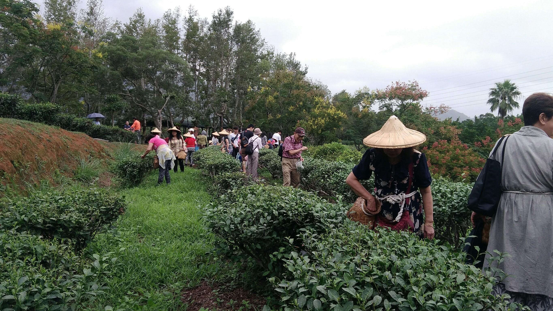 20171007教會文山農場茶文化_171007_0051