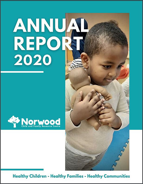 2020 annual report cover pic for website