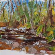 Wentworth valley river. NZ