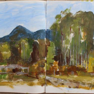 Wentworth valley 3 NZ