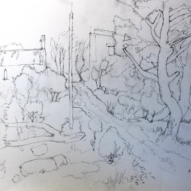 Sketch from Labelle Oriole