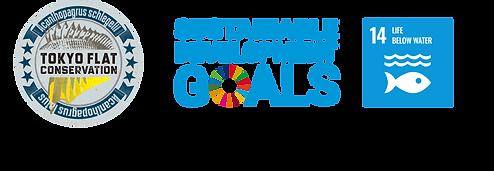 TFC_SDGs.png