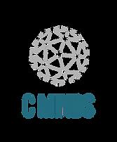 logo_C_MINDS_entrega-02 (3).png